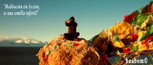 meditacion-boabom