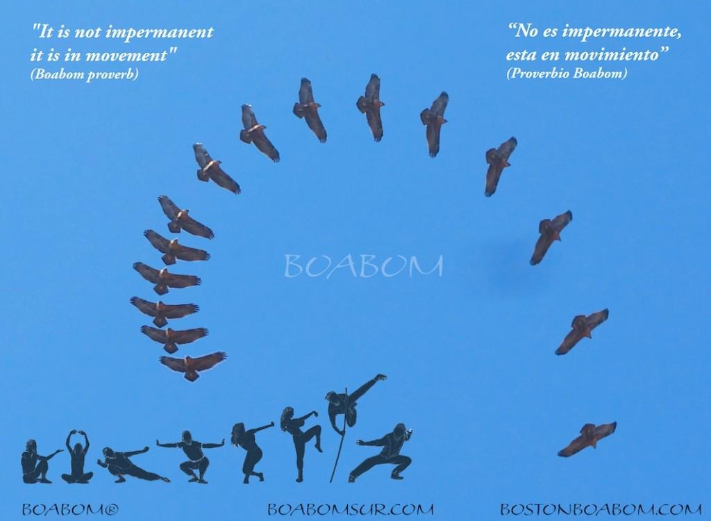 El Aguila 108 boabom